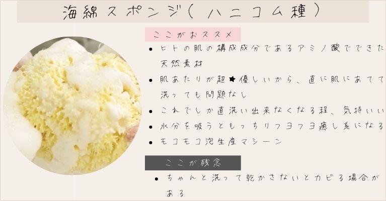 天然海綿スポンジ(ハニコム種)の紹介